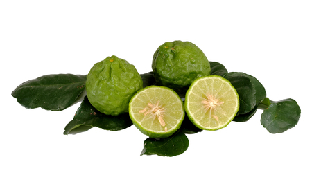neutralize: Kaffir lime, Bergamot Thai herb is various properties, with white isolated background