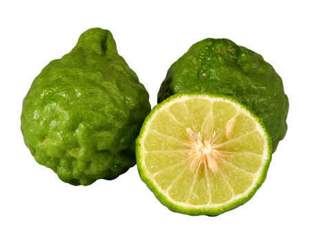 carminative: Kaffir lime, Bergamot Thai herb is various properties, with white isolated background