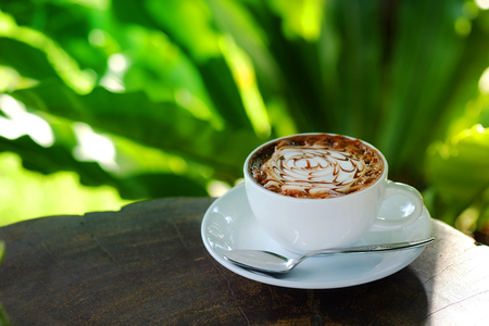 tarde de cafe: Hot mocha coffee in garden with relax time in the afternoon