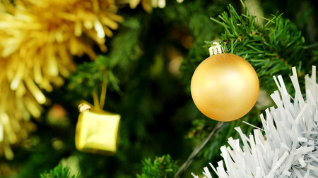 Golden Christmas ball and gilf decorate hanging on green pine tree for happy festival