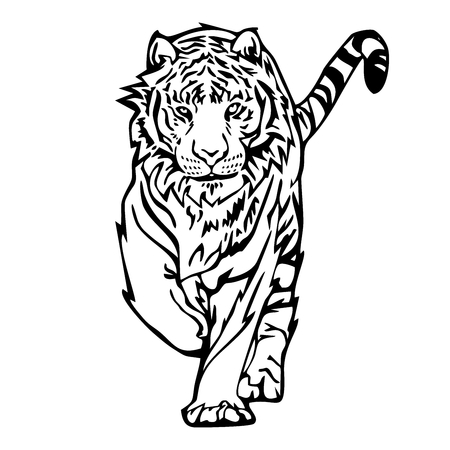 Tiger walk silhouette drawing tattoo vector with white isolated background