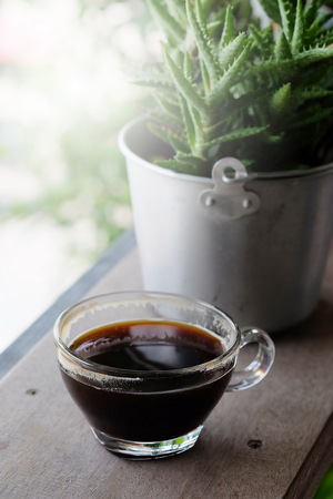 Hot black coffee or Americano coffee in transparent cup on wooden table in a little garden and have some space for write wording