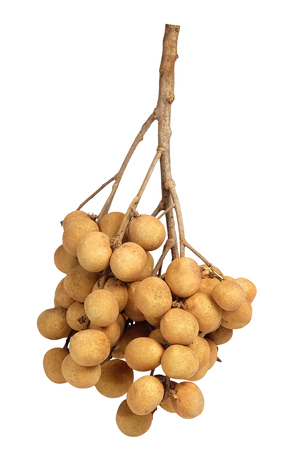 Bunch of longan Thai fruit with white isolated background