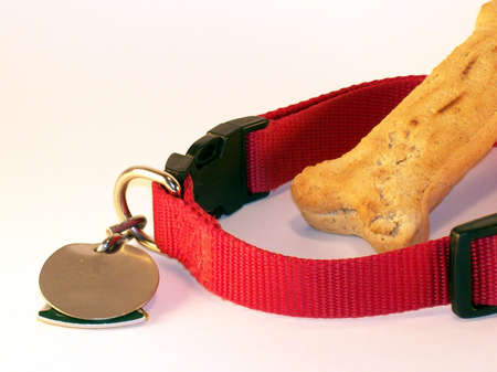 Dog Collar With Tags And Bone