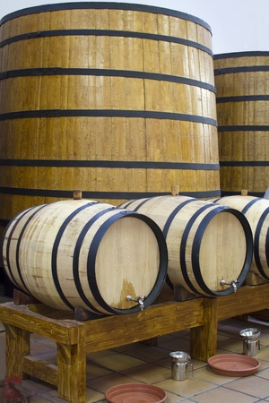 Big and small wooden wine casks. Wine cellar. Stock Photo