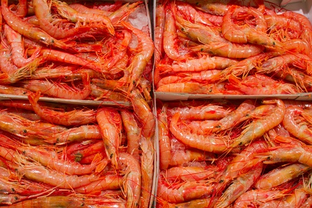 Big red shrimps cooled on ice