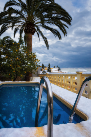 Snow the covered exotic plants and the pool which has dropped out in the Mediterranean.