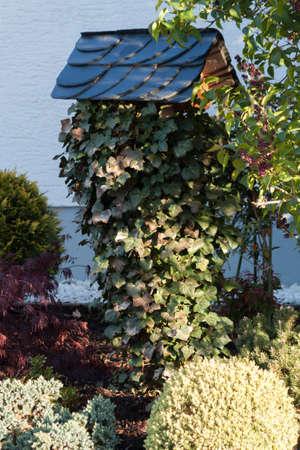 pflanzen: Vogelhaus