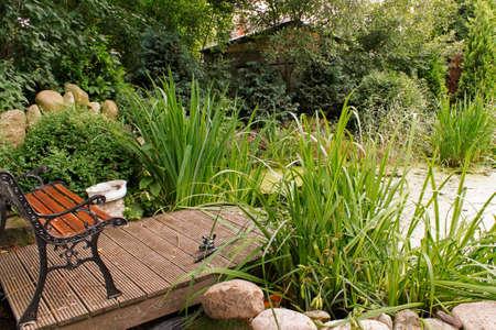 bassin jardin: �tang de jardin Banque d'images