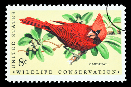 UNITED STATES AMERICA - CIRCA 1973: A postage stamp printed in the USA showing a red cardinal bird, circa 1973