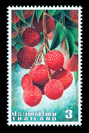 Thailand - Circa 2003: A Thai postage stamp printed in Thailand depicting Thai lychee fruit