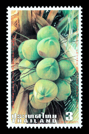 Thailand - Circa 2003: A Thai postage stamp printed in Thailand depicting Thai coconuts