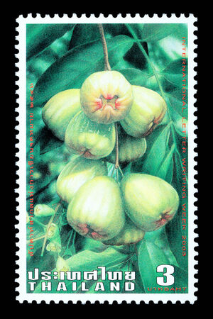 Thailand - Circa 2003: A Thai postage stamp printed in Thailand depicting traditional Thai mountain apple fruit
