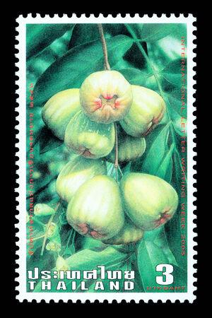 Thailand - Circa 2003: A Thai postage stamp printed in Thailand depicting traditional Thai mountain apple fruit Redakční
