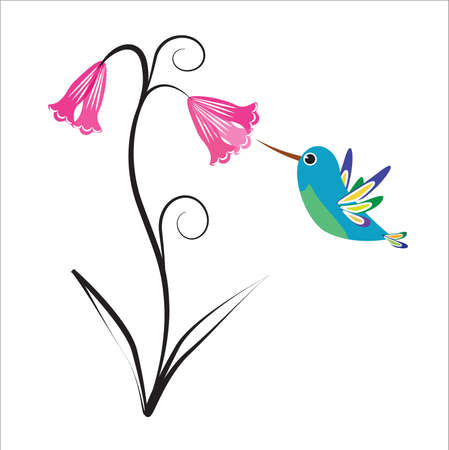 delicate: Small hummingbird flying around a delicate flower Illustration