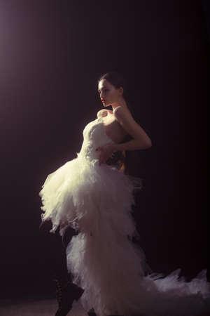 High fashion shot of elegant woman in long dress.