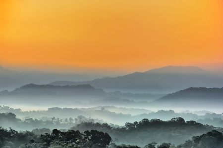 The sun shines through trees and fog at sunrise, at Hsinchu Emei Lake, Taiwan