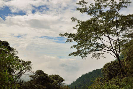 Mountain landscape-Mountain View Resort in the Taichung County,Taiwan.