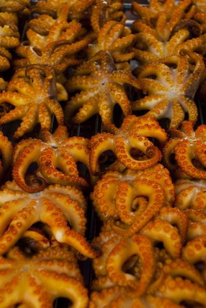the squid roasts , with colour is appetizing , Stock Photo - 14915867