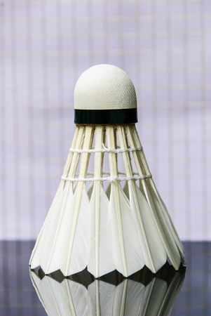 shuttle cock equipment important in badminton sport