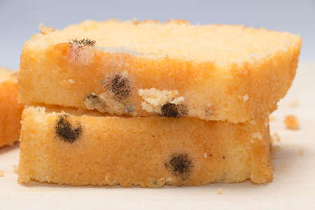 Moldy bread that is harmful to your health