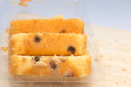 moldy: Moldy bread that is harmful to your health