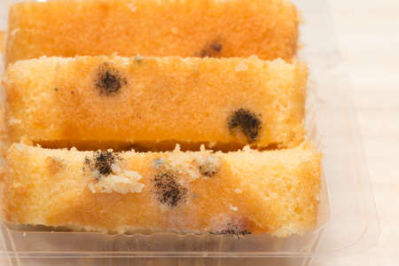 harmful: Moldy bread that is harmful to your health