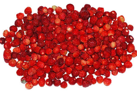 wild strawberry: Juicy Wild strawberry heap on white background