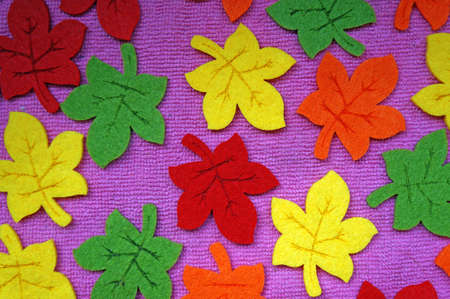 frondage: Yellow, red, orange and green Maple leaves out of felt on fabric as a background Stock Photo