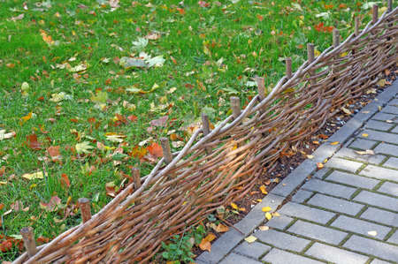 diagonally: Braided twigs low fence separating diagonally lawn with fallen leaves and pavement of gray tiles