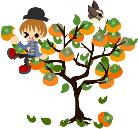 persimmon tree: A boy climbs the persimmon tree and eats a persimmon