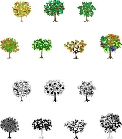 Icons of the trees of colorful fruits such as an apple grapes  Illustration