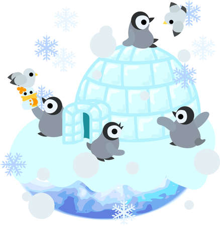 antarctic: Baby penguins are living in the igloo.