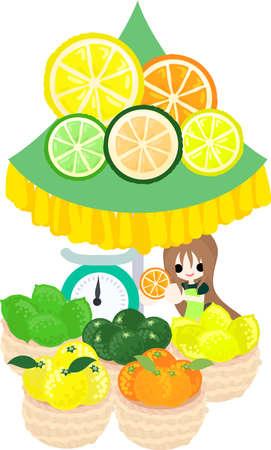 citrus fruits: The shop selling citrus fruits. Illustration