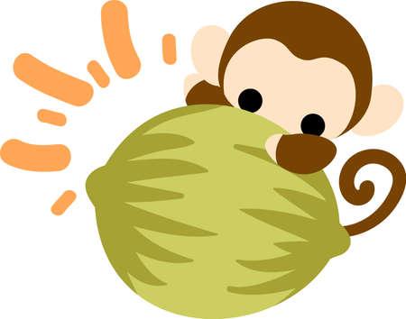 かなり猿と大きなココナッツ
