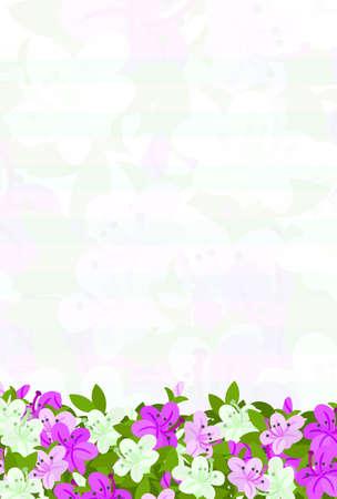 azalea: Postcard of flowers of azalea which imaged spring