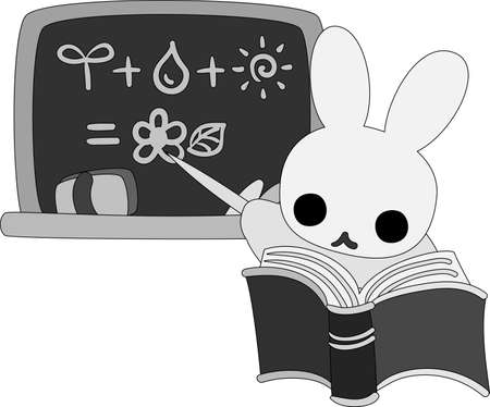 career coach: The rabbit which does the figure of the teacher Illustration