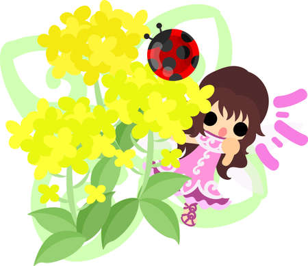 brassica: Pretty fairy and beautiful brassica and ladybug