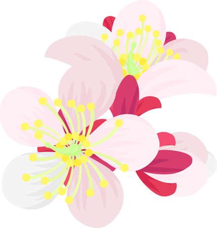 The illustration of pretty plum blossoms