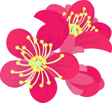 The illustration of red plum blossoms