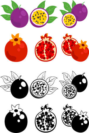 The cute icons of passion fruit and pomegranate  イラスト・ベクター素材