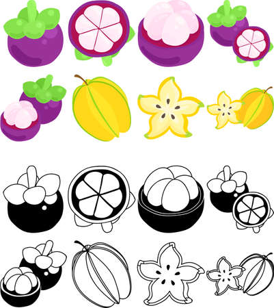 The cute icons of mangosteen and starfruit  イラスト・ベクター素材
