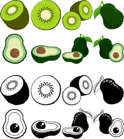 The cute icons of kiwi fruit and avocado  イラスト・ベクター素材