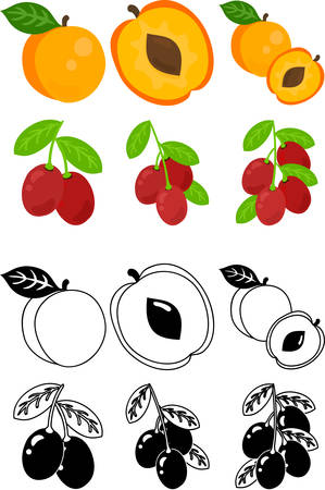 The cute icons of apricot and jujube