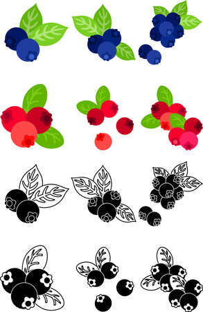 The cute icons of blueberries and cranberries