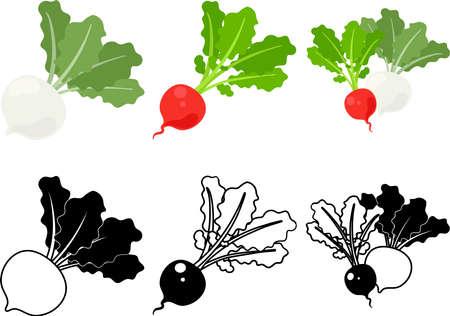 The cute icons of turnip and radish  イラスト・ベクター素材