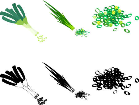 The cute icons of spring onion