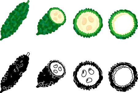 The cute icons of bitter gourd Vector Illustration