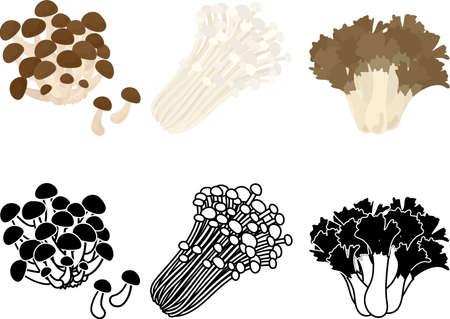 The cute icons of shimeji mushroom and velvet shank mushroom and grifola frondosa