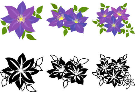 The cute icons of clematis  イラスト・ベクター素材
